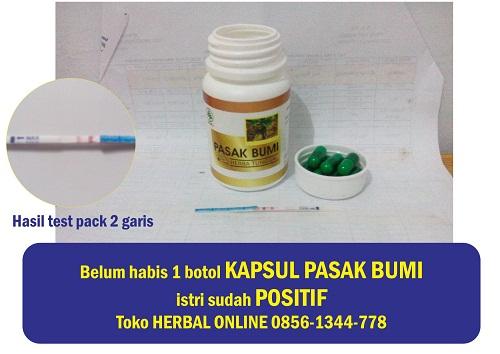 jual obat herbal penambah sperma